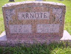 True V Arnote