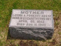 Levina A <i>Pomeroy</i> Reece