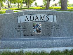 Raymond J Adams