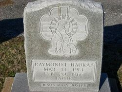 Raymond E Haukap