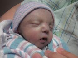 Alexander Amadeus (Baby) Alex Perez