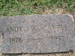 Andy J Blackwell