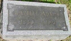 Gazelle Adams