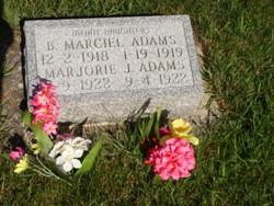 Marjorie J. Adams