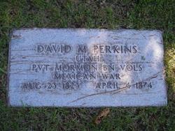 David Martin Perkins