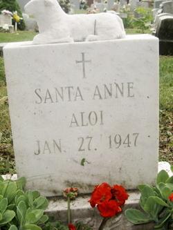 Santa Anne Aloi