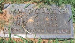 James Cargal Adkins