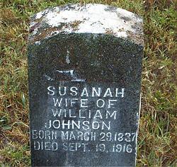Susanah Thomason Johnson