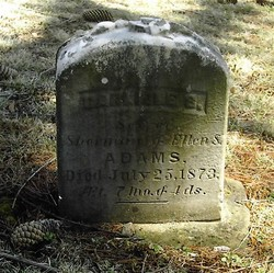 Carlisle S. Adams