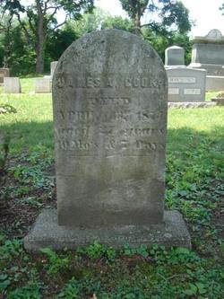 James A. Cook