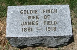 Goldie <i>Finch</i> Field
