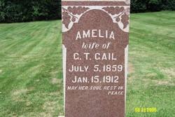 Catherine Amelia <i>Sheehan</i> Gail