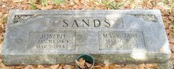 Mary Jane <i>Hogg</i> Sands