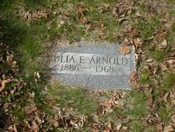 Eulia Emeline <i>Scollay</i> Arnold