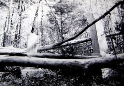 White Oak Villa Cemetery