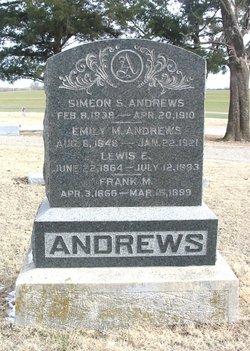 Pvt Simeon Silas Andrews