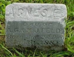 Agnes E Feldt