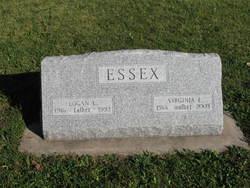 Virginia L Essex