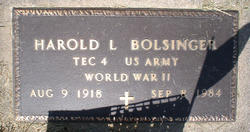 Harold Leroy Bolsinger