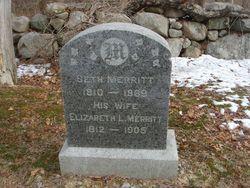 Elizabeth L Merritt
