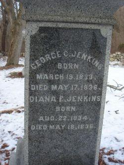 Diana Elizabeth Jenkins