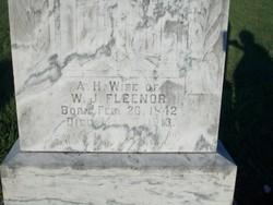 Amanda Harriett <i>Redwine</i> Fleenor