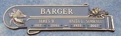 Anita L. <i>Sumrall</i> Barger