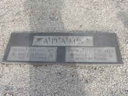 Dr Henry Herlong Adams