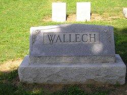Henry Cheston Wallech