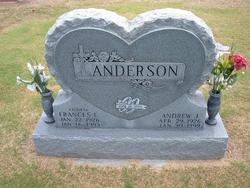 Andrew J. A J Anderson