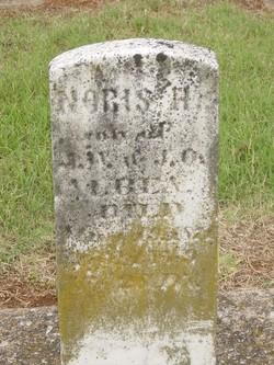 Noris H. Albea
