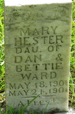 Mary Hester Ward