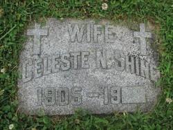 Celeste N. Shine