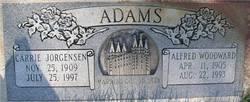 Alfred Woodward Adams