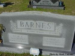 Carvis E. Barnes