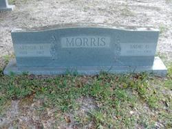 Sadie G Morris