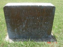 David Andrew Cobb