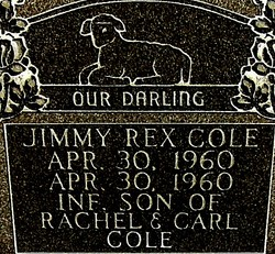 Jimmy Rex Cole