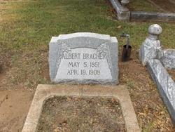 Albert Bracher