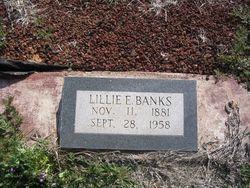 Lillie Eugenia <i>McClung</i> Banks