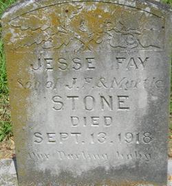 Jesse Fay Stone