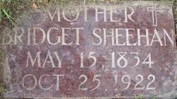 Bridget Betsy <i>McCarthy</i> Sheehan