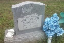 Joel Glenn Garland