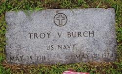 Troy Virgil Burch