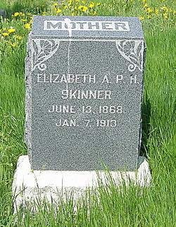 Elizabeth Ann P <i>Hunter</i> Skinner