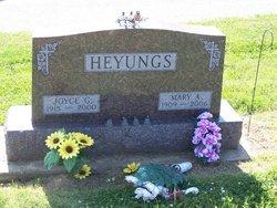 Joyce G. Heyungs
