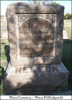 Sarah Jane <i>Hansford</i> Nelson