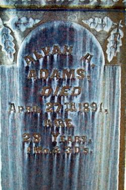 Alvah Abraham Adams