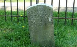 Andrew Peter Anderson