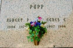 Albert Paul Pupp